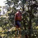 Rencontre ESSARTS 2001