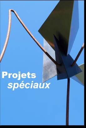 bouton-projets-speciaux-02