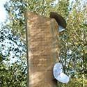 Obelisco natural - Oscar Ortíz
